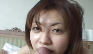 Asian sweetheart engulfing enduring primarily a chubby weenie like a whore